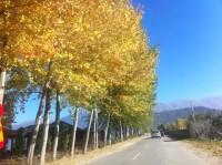 Tushemisht, bukuria e natyrës në model zhvillimi ekonomik