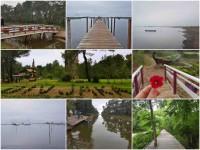 Mrekullitë e natyrës së Divjakës përmes një udhëtimi me varkë