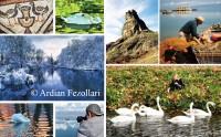 Pogradeci, ''perla'' e liqenit në juglindje të Shqipërisë
