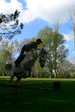 Nëse do të kalërosh, zgjidh kalin e duhur